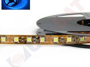 Zila LED lenta ūdens nedroša GL-4001-5M-60 LED:3528SMD